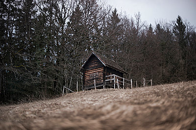 Shelter in the woods - p1007m853053 by Tilby Vattard