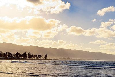 Goldenes Licht überm Pazifik, Oahu, Hawaii - p1196m1128167 von Biederbick & Rumpf