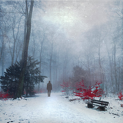 Man walking in snow covered forest - p300m961912 by Dirk Wüstenhagen
