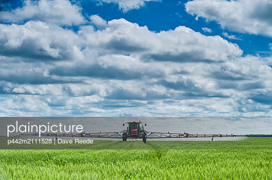 A high clearance sprayer gives a ground chemical application of fungicide to mid-growth wheat, near Dugald; Manitoba, Canada - p442m2111528 by Dave Reede
