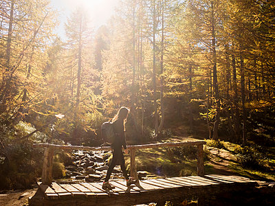 Woman exploring forest, Antronapiana, Piemonte, Italy - p429m2075197 by Guido Cavallini