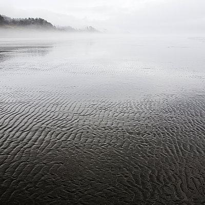 Pattern in Wet Sand Along Coast on Foggy Day, Pacific Beach, Washington, USA - p694m1403834 by David Atkinson