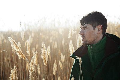 Man exploring reeds - p1577m2150280 by zhenikeyev
