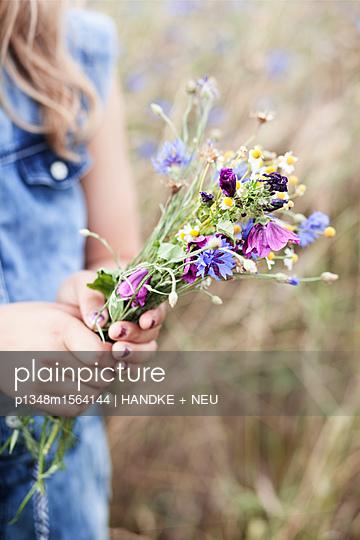 Sommerblumen - p1348m1564144 von HANDKE + NEU