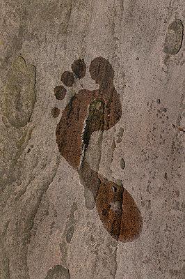 Wet Foot Print - p1072m829356 by Neville Mountford-Hoare