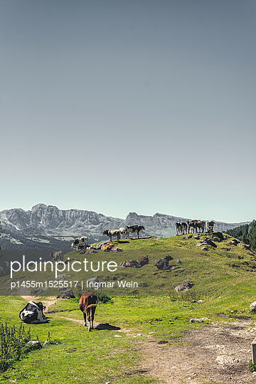 Bergregion Secada in Südtirol, Italien - p1455m1525517 von Ingmar Wein