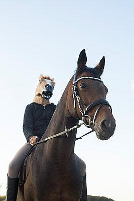 Horse - p1621m2216148 by Anke Doerschlen