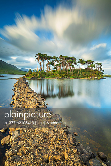 Ireland, Galway, Connemara, Wild Atlantic Way, Island covered with trees on Derryclare Lake in the Connemara National Park - p1377m2105413 by Luigi Vaccarella