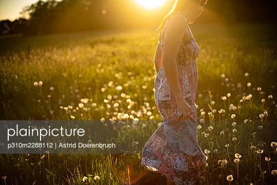 A walk through the meadow in summer - p310m2288112 by Astrid Doerenbruch