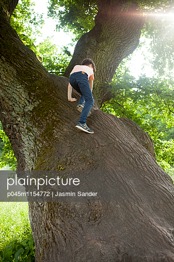 Junge klettert auf einen Baum - p045m1154772 von Jasmin Sander