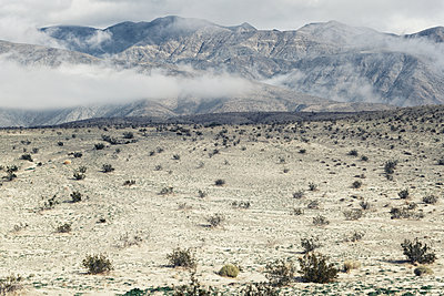 USA, California, Anza Borrego Desert plain with Mountains - p1154m2280949 by Tom Hogan