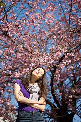 Cherry blossom - p5860661 by Kniel Synnatzschke