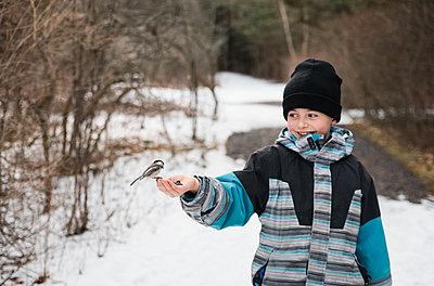Young boy feeding a chickadee bird from his hand on a winter day. - p1166m2151762 by Cavan Images