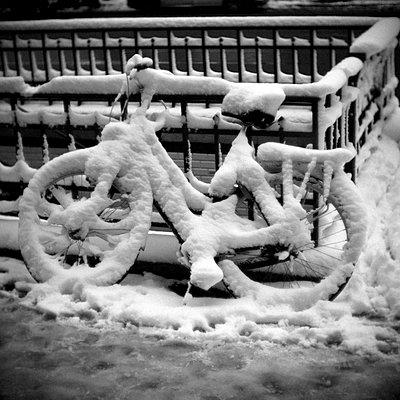 Paris, winter scene - p1654m2253752 by Alexis Bastin