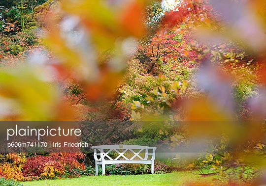 Herbstidylle - p606m741170 von Iris Friedrich