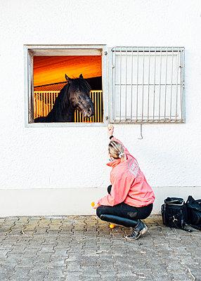 Woman feeding riding horse with tangerines - p1085m1496589 by David Carreno Hansen
