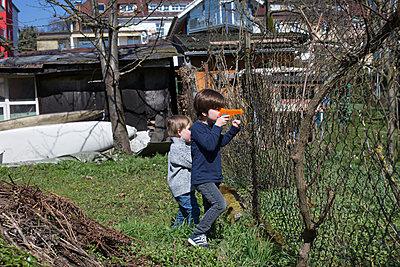 Brüder spielen im Garten - p1308m1332373 von felice douglas