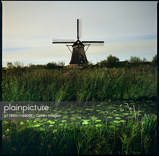 View of lake and plants against windmill at dusk