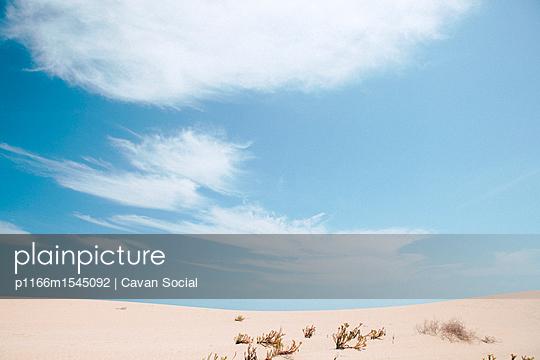 p1166m1545092 von Cavan Social