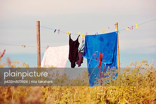 Wäschetrocknen - p432m823924 von mia takahara