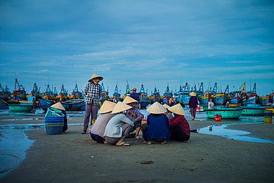 Fishing harbor in Mui Ne, Binh Thuan Province, Vietnam, Southeast Asia - p934m1177094 by Sebastien Loffler