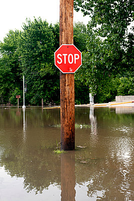 Stop sign on flooded street - p623m1125553f by Jerome Gorin