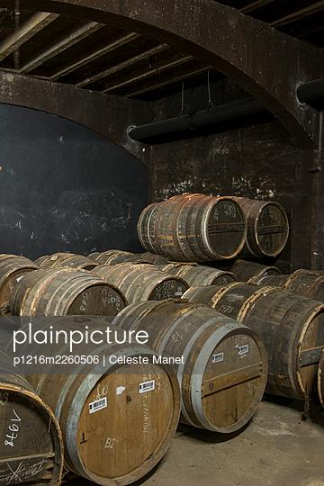 Barrels in winery cellar - p1216m2260506 by Céleste Manet