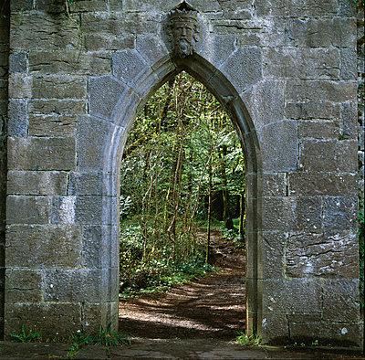Gothic archway - Long Abbey (ruined) Co. Mayo, Republic of Ireland. - p8551952 by Joe Cornish