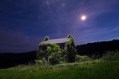 Kudzu Overgrown House In Rural WV - p1166m2258345 by Cavan Images
