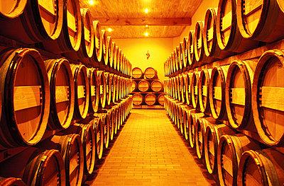 Wine cellar - p2681429 by Oliver Rüther