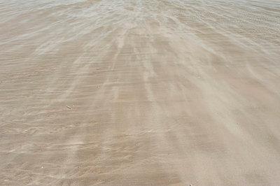 Romo, Sand dunes at North Sea - p300m827457f by Jana Mänz