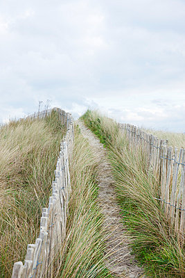 Dunes - p248m763367 by BY