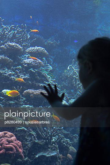 Aquarium - p8280499 von souslesarbres