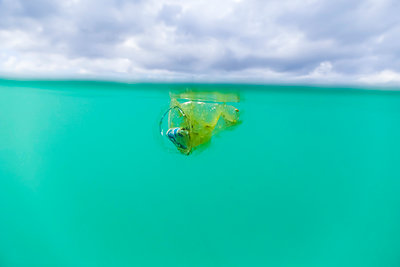 Old plastic cup littering ocean surface - p1166m2153561 by Cavan Images