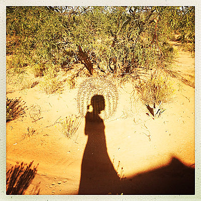 Holy cactus - p1670m2253540 by HANNAH