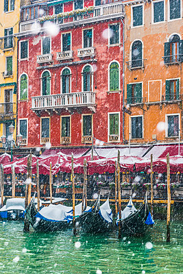 Venice, Veneto, Italy. Snowfall over moored gondolas along the Grand Canal (Canal Grande). - p651m2034002 by Marco Bottigelli