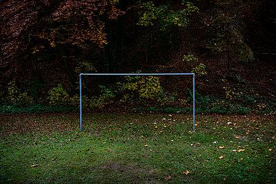 Soccer field - p1132m1094341 by Mischa Keijser