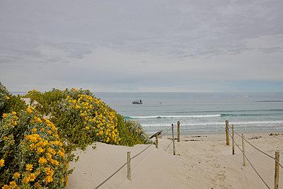 South Africa, Beach path - p1640m2242072 by Holly & John