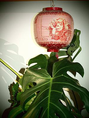 Chinesische Laterne - p132m1538506 von Peer Hanslik