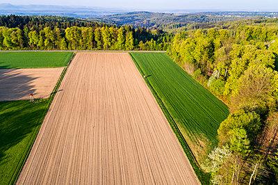 Germany, Baden-Wuerttemberg, Swabian Alb, Nassach Valley and Fils Valley, Aerial view of field in spring - p300m1585420 von Stefan Schurr