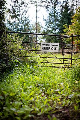 Garden gate - p1057m1060144 by Stephen Shepherd