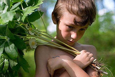 Boy with Mayapples - p1169m1463430 by Tytia Habing