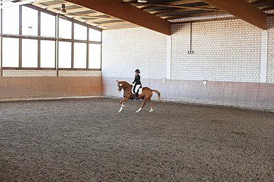 Indoor riding arena - p1293m1138938 by Manuela Dörr