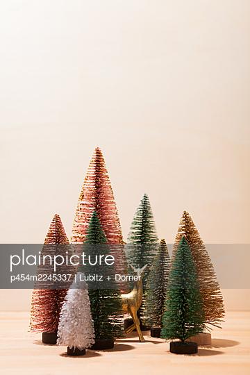 Magic forest - p454m2245337 by Lubitz + Dorner