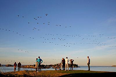 Touristen am Strand beobachten Vogelzug - p1307m1185231 von Agnès Deschamps