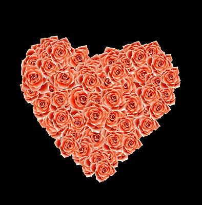 Herz aus Rosen      - p450m2231390 von Hanka Steidle