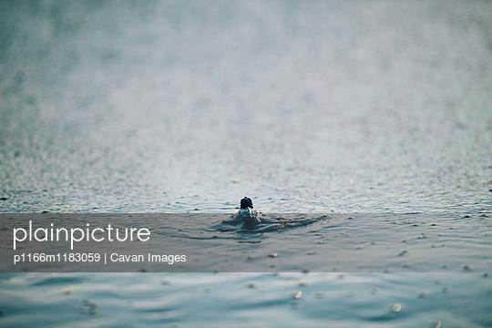 p1166m1183059 von Cavan Images