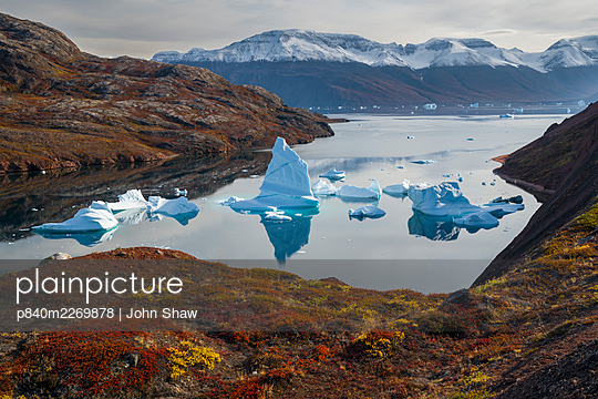 Icebergs and autumn tundra near Rode O (Red Island) in Rode Fjord (Red Fjord), Scoresby Sund, Greenland, August. - p840m2269878 by John Shaw