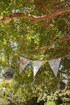 Festliche Dekoration im Baum - p045m1222202 von Jasmin Sander