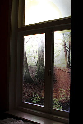 View out a window - p703m699027 by Anna Stumpf
